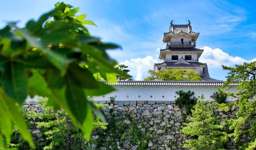 【恋愛ジンクス】愛媛県の人気の縁結び神社のご紹介