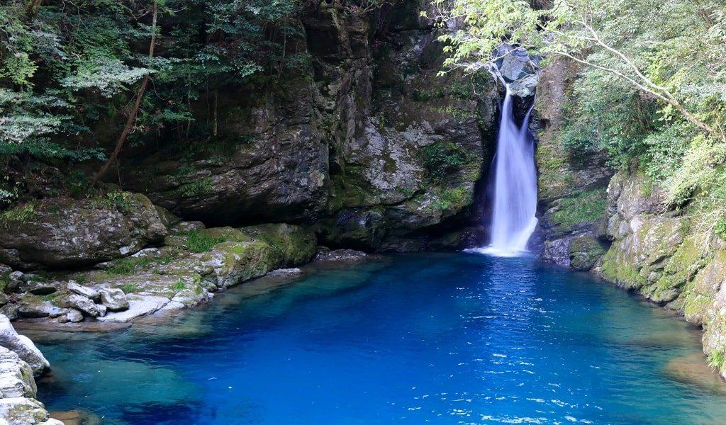 【恋愛ジンクス】高知県の人気の縁結び神社のご紹介