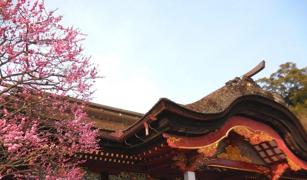 【恋愛ジンクス】福岡県の人気の縁結び神社のご紹介