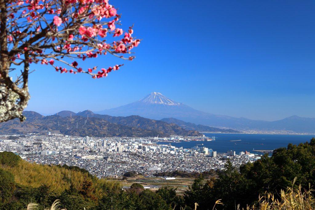 【婚活ジンクス】北陸、東海、近畿地方の婚活パワースポット、縁結び神社